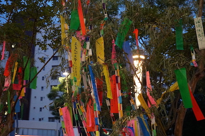 「天の川蛍祭2017」レポート